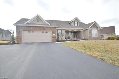 Canfield Single Family Home For Sale: 4164 Nicolina Way