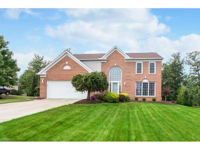 North Royalton Single Family Home For Sale: 19492 Rye Gate Dr