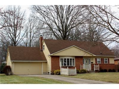 Boardman Single Family Home For Sale: 6938 Ron Park Pl
