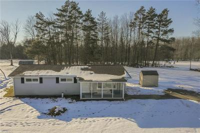 Geauga County Single Family Home For Sale: 18770 Elmwood Ln