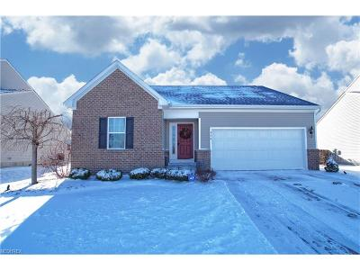 Painesville Township Single Family Home For Sale: 426 Greenfield Ln