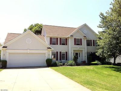 Wadsworth Single Family Home For Sale: 353 Laurel Ln