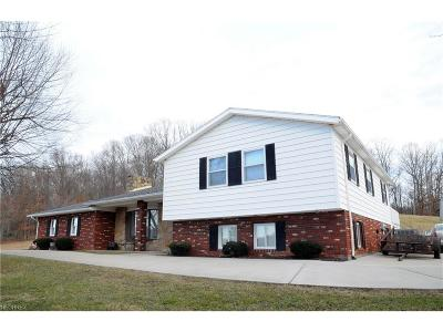 Guernsey County Single Family Home For Sale: 13208 Ideal Rd