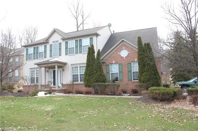 Twinsburg Single Family Home For Sale: 9152 Oakview Ct