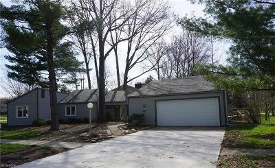 Strongsville Single Family Home For Sale: 22463 Rock Creek Cir