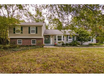 Fairview Park Single Family Home For Sale: 20725 Germantown Drive