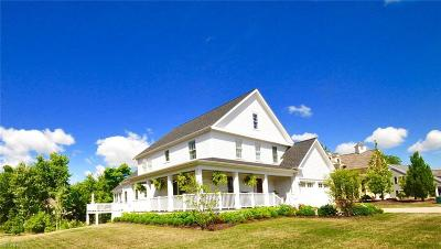 Chagrin Falls Single Family Home For Sale: 195 Falls Walk Way
