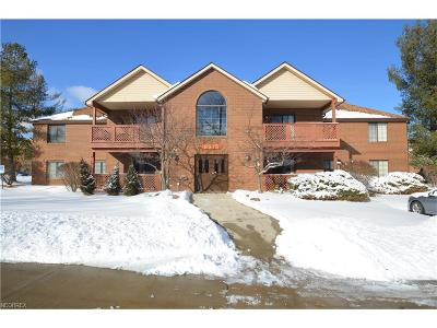 Broadview Heights Condo/Townhouse For Sale: 8615 Scenicview Dr #204