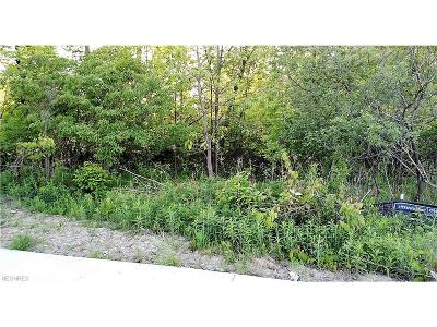 Strongsville Residential Lots & Land For Sale: 18670 Pearl Rd