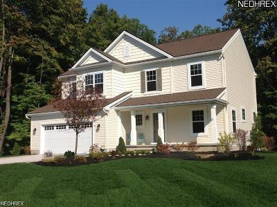 Geauga County Single Family Home For Sale: 390 Wilson Mills Rd