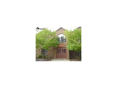 Broadview Heights Condo/Townhouse For Sale: 8609 Scenicview Dr #N203