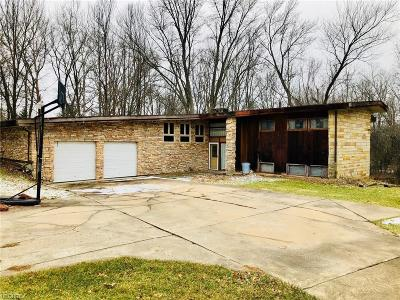 Leavittsburg Single Family Home For Sale: 4821 Eagle Creek Rd