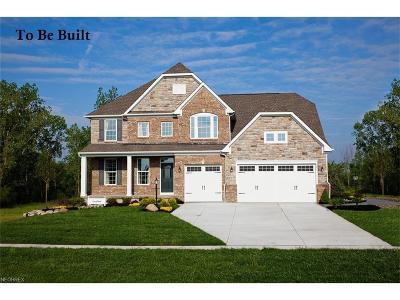 Medina Single Family Home For Sale: 262 Hooper Way