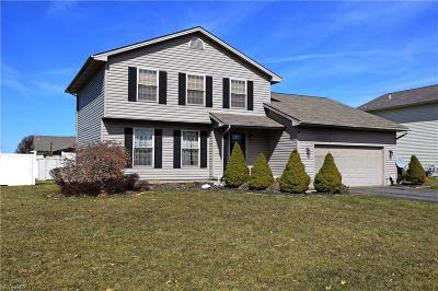 Mineral Ridge Single Family Home For Sale: 5096 Cranberry Dr