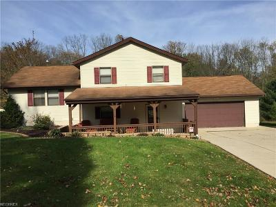 Garrettsville Single Family Home For Sale: 8027 State Route 305