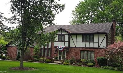 Youngstown Single Family Home For Sale: 4431 Yakata Dora Dr