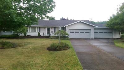 Youngstown Single Family Home For Sale: 151 Mill Run Dr