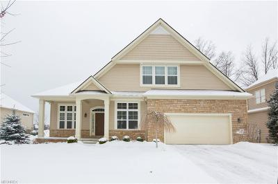Avon Single Family Home For Sale: 33557 Reserve Way At St. Andrews