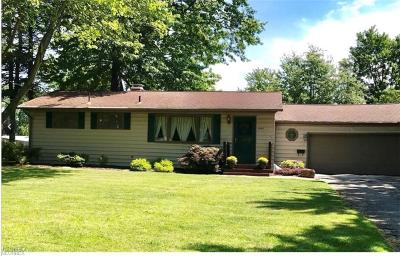 Youngstown Single Family Home For Sale: 1481 Yolanda Dr