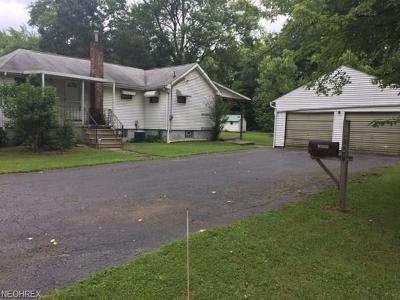 Leavittsburg Single Family Home For Sale: 248 Bishop