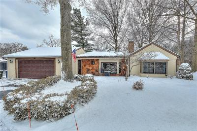 Willoughby Hills Single Family Home For Sale: 28900 Eddy Rd