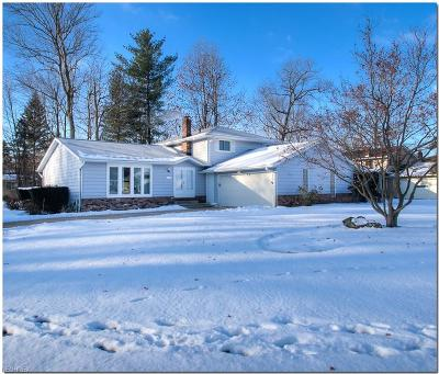 Solon Single Family Home For Sale: 33080 Cromwell Dr