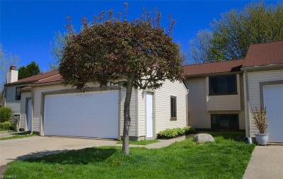 Painesville OH Condo/Townhouse For Sale: $113,900