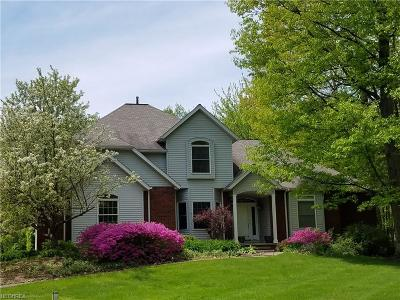 Geauga County Single Family Home For Sale: 12580 Chesterfield Ln