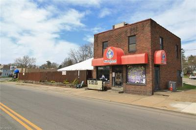 Zanesville Commercial For Sale: 1335 Linden Ave