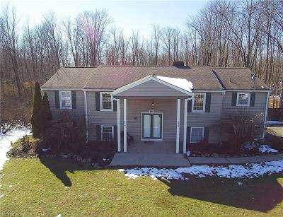 Geauga County Single Family Home For Sale: 18048 Alden St