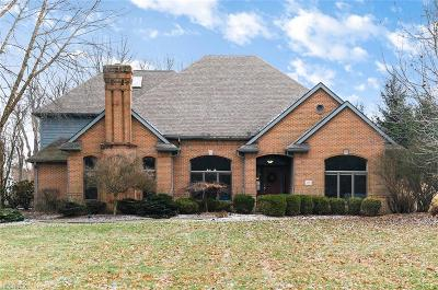 Licking County Single Family Home For Sale: 89 Wexford Dr