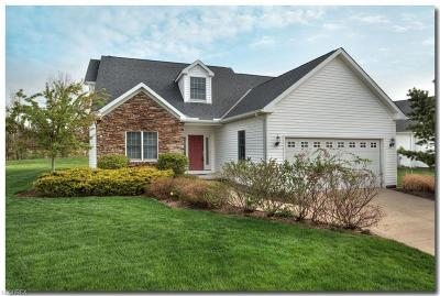 Avon Single Family Home For Sale: 39290 Camelot Way