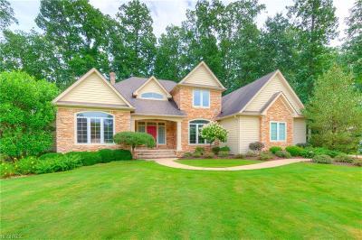 Solon Single Family Home For Sale: 6549 Dorset