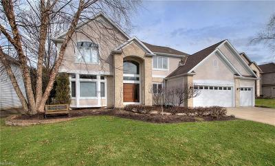 Cuyahoga County Single Family Home For Sale: 530 Beacon Hill