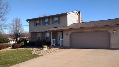 Struthers Single Family Home For Sale: 195 Lakeshore