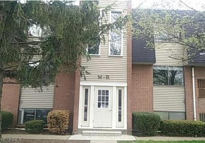 Avon Lake Condo/Townhouse For Sale: 216 Moore Rd #4R