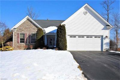 Chagrin Falls Condo/Townhouse For Sale: 543 Honeysuckle Ln