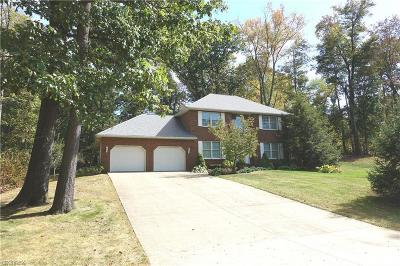 Single Family Home For Sale: 2155 Kelaney Dr Northeast