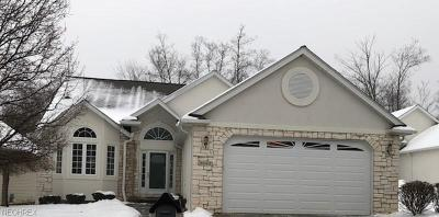 Brecksville, Broadview Heights Single Family Home For Sale: 9283 Scottsdale Dr