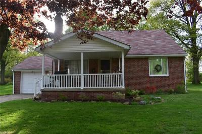 Youngstown Single Family Home For Sale: 114 Chadwick Ln
