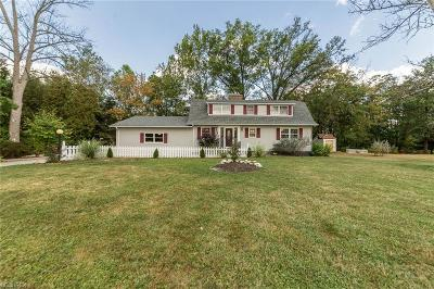 Elyria Single Family Home For Sale: 41430 Butternut Ridge Rd