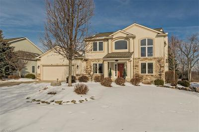 Twinsburg Single Family Home For Sale: 2901 Haggett Dr
