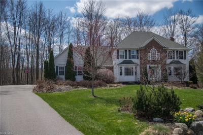 Chagrin Falls Single Family Home For Sale: 18370 Bayberry Dr