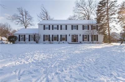 Avon Lake Single Family Home For Sale: 31863 Bayview Dr