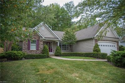 Lake County Single Family Home For Sale: 12254 Summerwood Dr