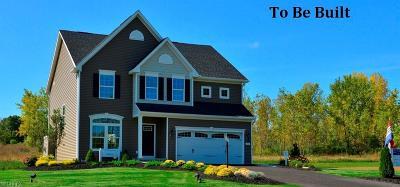 Medina Single Family Home For Sale: 254 Hooper Way