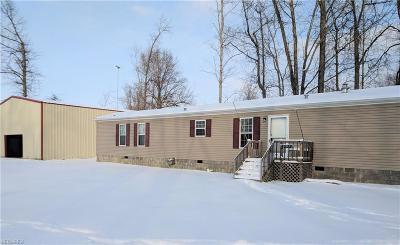 Geneva Single Family Home For Sale: 4938 Thomas Blvd
