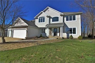 Cuyahoga County Single Family Home For Sale: 520 Beacon Hill Dr