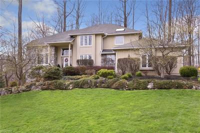 Chagrin Falls Single Family Home For Sale: 17410 Hawksview Ln