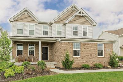 Twinsburg Single Family Home For Sale: 3020 Steffan Woods Dr